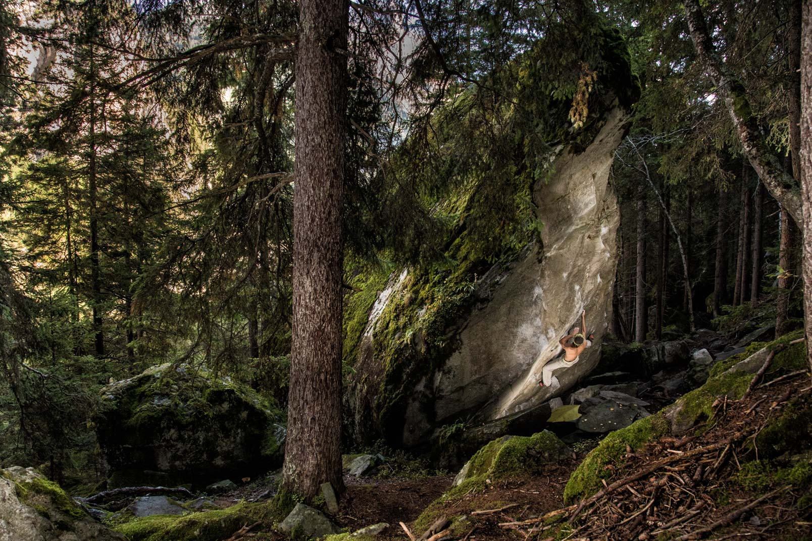 Magic Wood | Stefan Kuerzi - Climbing Photography